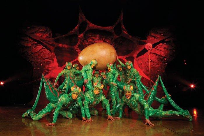 Cricket: OVO Cirque du Soleil (OSA Images)