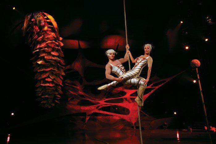 OVO, Cirque du Soleil